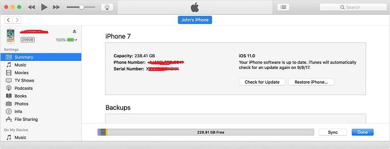 update iPhone software